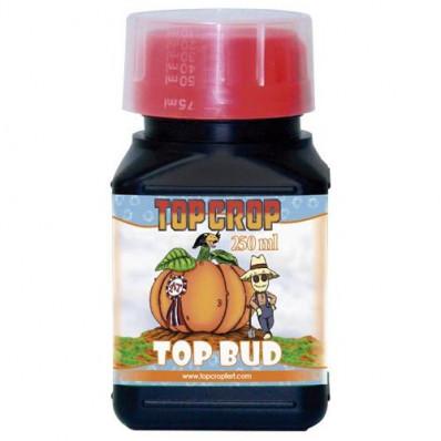 Top Crop Top Bud 100ml