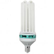CFL 250W Dual