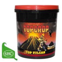 Top Crop Top Vulcan 700 g