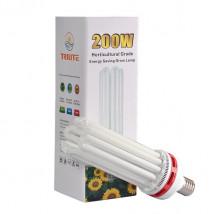 CFL 200W Dual
